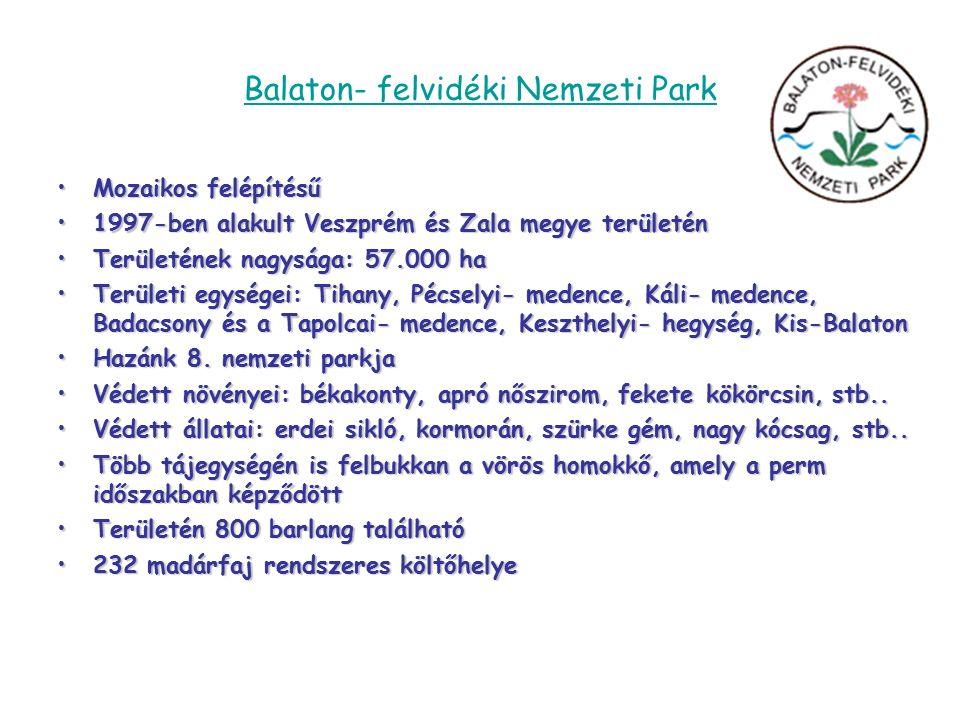 Balaton- felvidéki Nemzeti Park Mozaikos felépítésűMozaikos felépítésű 1997-ben alakult Veszprém és Zala megye területén1997-ben alakult Veszprém és Zala megye területén Területének nagysága: 57.000 haTerületének nagysága: 57.000 ha Területi egységei: Tihany, Pécselyi- medence, Káli- medence, Badacsony és a Tapolcai- medence, Keszthelyi- hegység, Kis-BalatonTerületi egységei: Tihany, Pécselyi- medence, Káli- medence, Badacsony és a Tapolcai- medence, Keszthelyi- hegység, Kis-Balaton Hazánk 8.