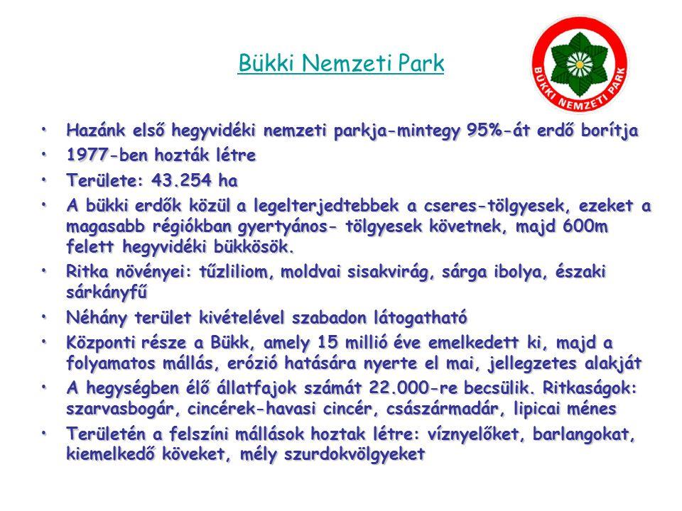 Örségi Nemzeti Park 2002-ben hozták létre Területe: 44.000 ha Területi egységei: Őrség, Vendvidék, Rába folyó völgye, Szentgyörgyvölgy Területén több mint 200 forrás található Szalafő őserdejében 1950 óta nem vágtak ki és nem is ültettek fát, ember itt nem avatkozhat a természet dolgába Tíz ritka tőzegmohafaj élőhelye Jellegzetes növényei: fecsketárnics, zergeboglár, sárga liliom, gyapjúsás, szibériai nőszirom, vidrafű, kereklevelű harmatfű, tavaszi hérics, fekete kökörcsin, piros kígyósziszt, hegyi árvalányhaj Jellegzetes állatai: bagolyfélék, holló, vörös vércse