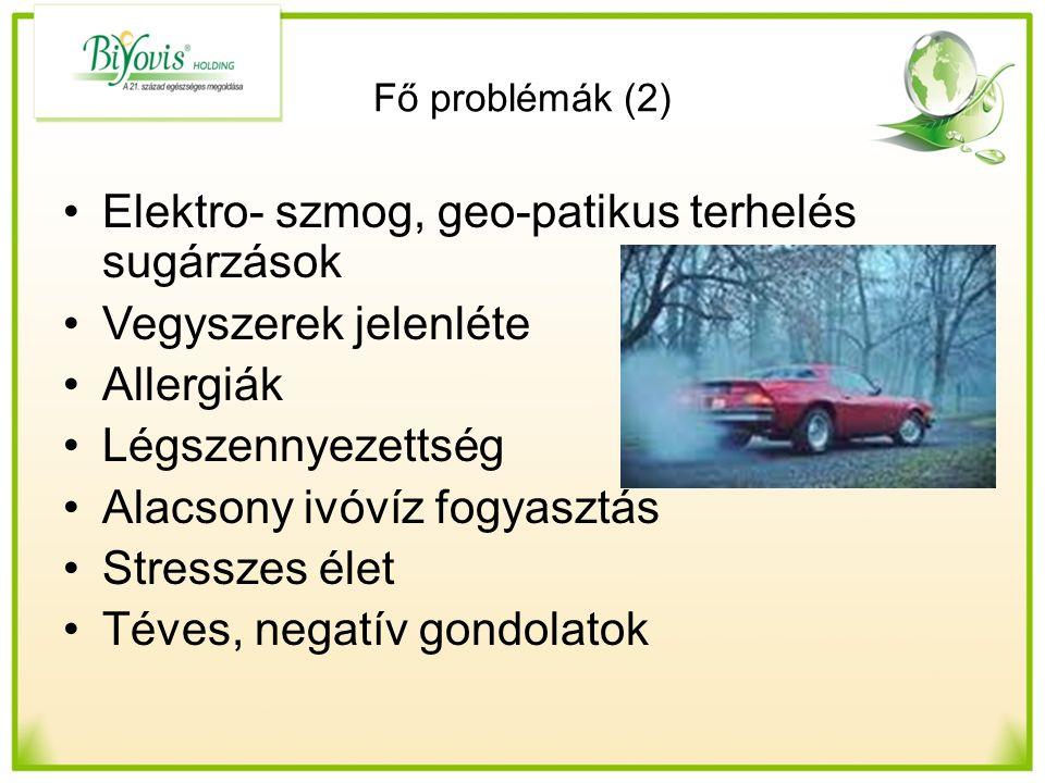 Elektro- szmog, geo-patikus terhelés sugárzások Vegyszerek jelenléte Allergiák Légszennyezettség Alacsony ivóvíz fogyasztás Stresszes élet Téves, negatív gondolatok Fő problémák (2)