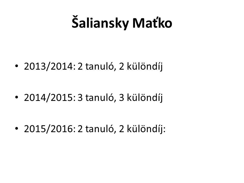 Šaliansky Maťko 2013/2014: 2 tanuló, 2 különdíj 2014/2015: 3 tanuló, 3 különdíj 2015/2016: 2 tanuló, 2 különdíj: