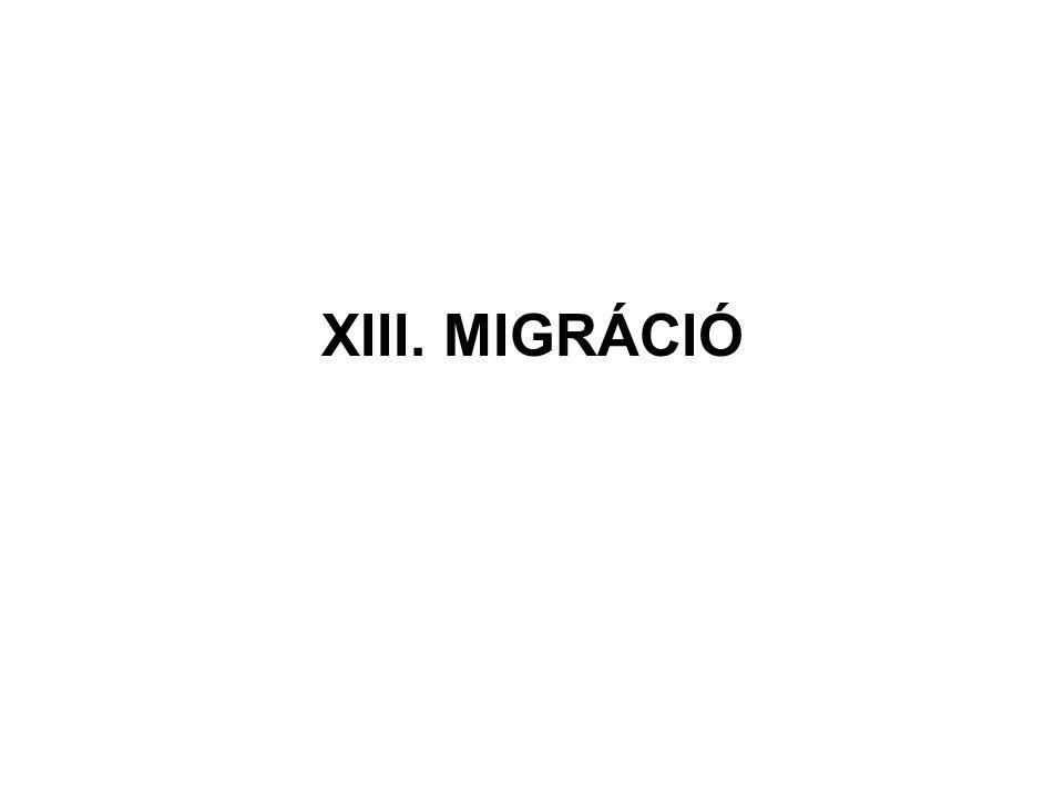 XIII. MIGRÁCIÓ