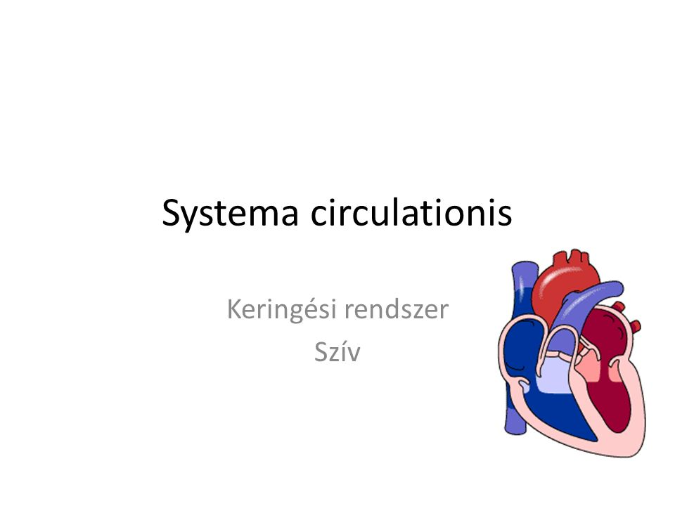 Systema circulationis Keringési rendszer Szív