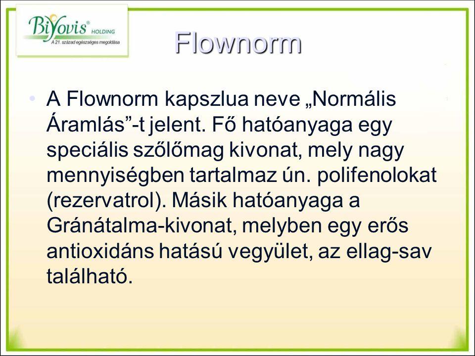 """Flownorm A Flownorm kapszlua neve """"Normális Áramlás -t jelent."""