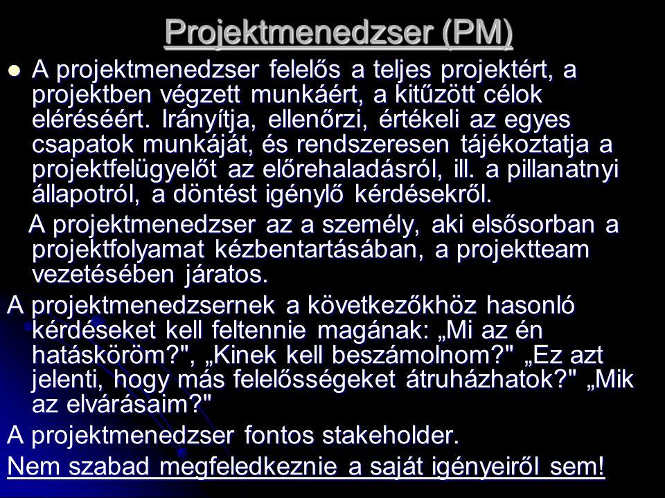 Projektmenedzser (PM) A projektmenedzser felelős a teljes projektért, a projektben végzett munkáért, a kitűzött célok eléréséért. Irányítja, ellenőrzi