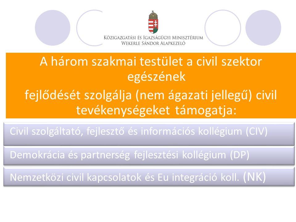A három szakmai testület a civil szektor egészének fejlődését szolgálja (nem ágazati jellegű) civil tevékenységeket támogatja: Civil szolgáltató, fejlesztő és információs kollégium (CIV) Demokrácia és partnerség fejlesztési kollégium (DP) Nemzetközi civil kapcsolatok és Eu integráció koll.