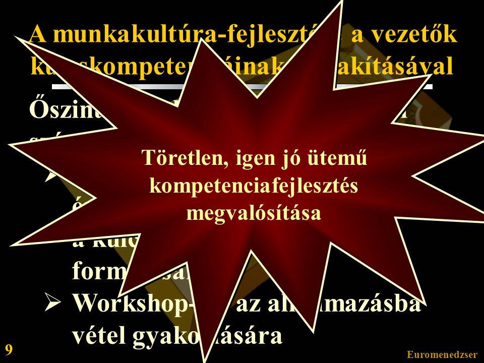 Euromenedzser 8 II. Egy 21 hónapos tanácsadási folyamat mérföldkövei és jellemzői 3.