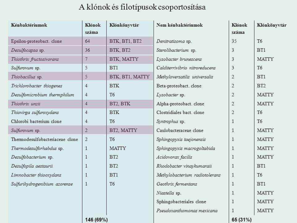 KénbaktériumokKlónok száma KlónkönyvtárNem kénbaktériumokKlónok száma Klónkönyvtár Epsilon-proteobact.