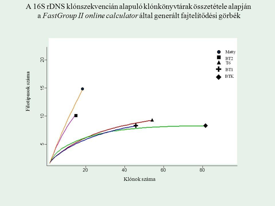 Klónok száma A 16S rDNS klónszekvencián alapuló klónkönyvtárak összetétele alapján a FastGroup II online calculator által generált fajtelítődési görbék Filotípusok száma 20406080 5 10 20 15