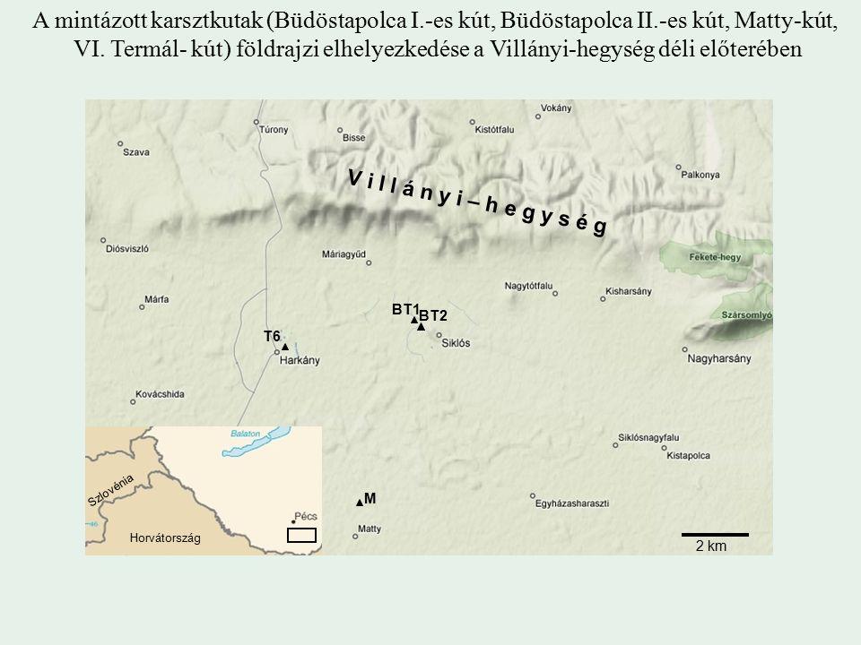 A mintázott karsztkutak (Büdöstapolca I.-es kút, Büdöstapolca II.-es kút, Matty-kút, VI.