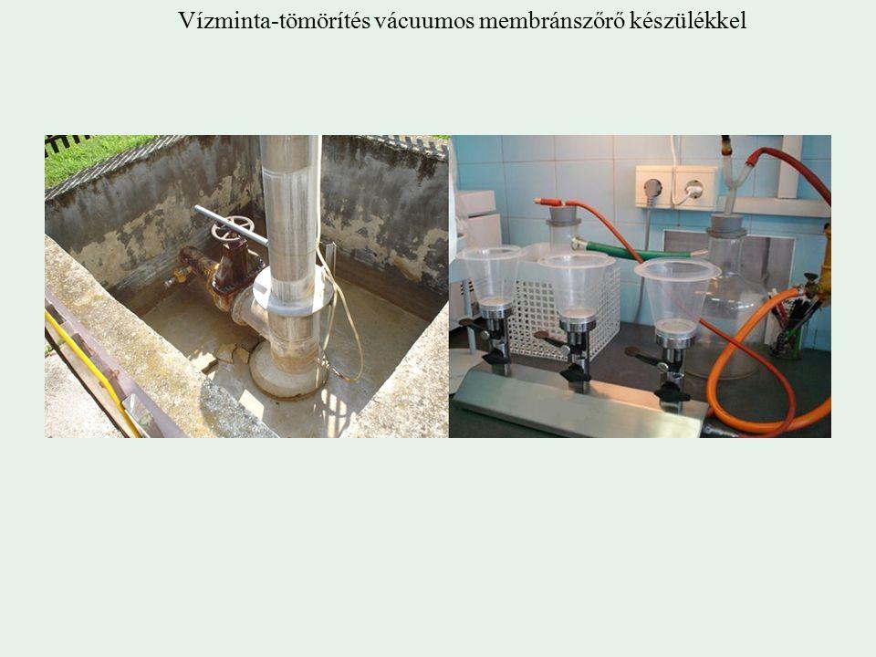 Vízminta-tömörítés vácuumos membránszőrő készülékkel