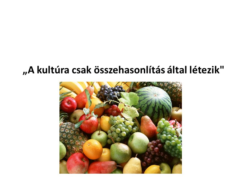 """A kultúra csak összehasonlítás által létezik Geert Hofstede (www.geert-hofstede.com)www.geert-hofstede.com"