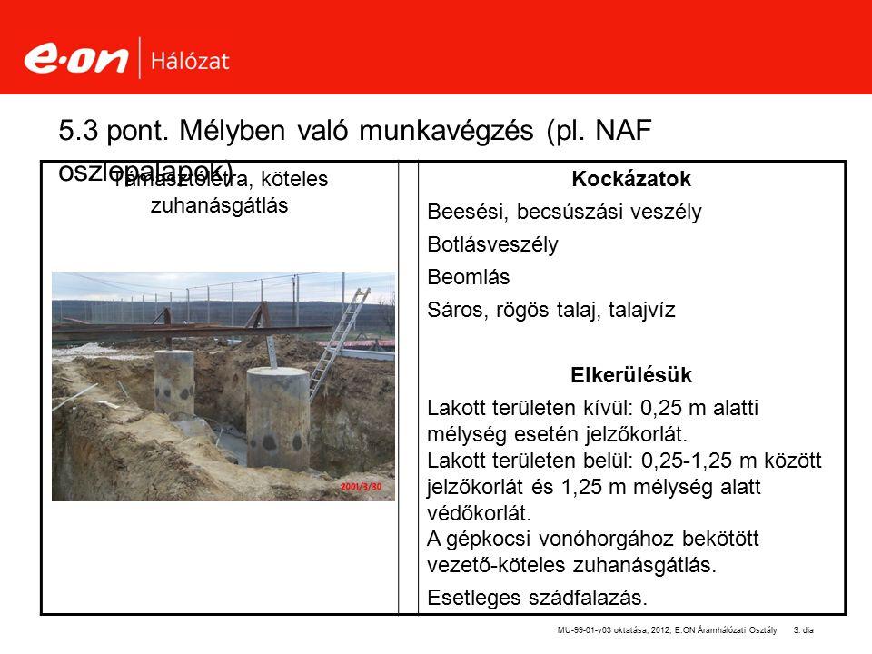 3. dia 5.3 pont. Mélyben való munkavégzés (pl. NAF oszlopalapok) Támasztólétra, köteles zuhanásgátlás Kockázatok Beesési, becsúszási veszély Botlásves