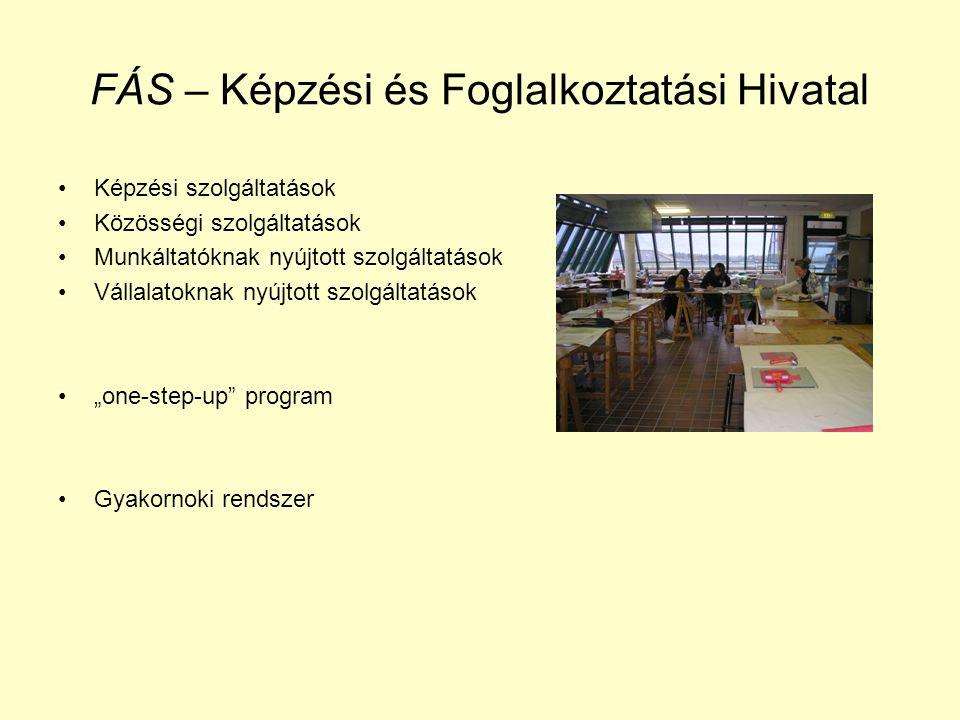 """FÁS – Képzési és Foglalkoztatási Hivatal Képzési szolgáltatások Közösségi szolgáltatások Munkáltatóknak nyújtott szolgáltatások Vállalatoknak nyújtott szolgáltatások """"one-step-up program Gyakornoki rendszer"""