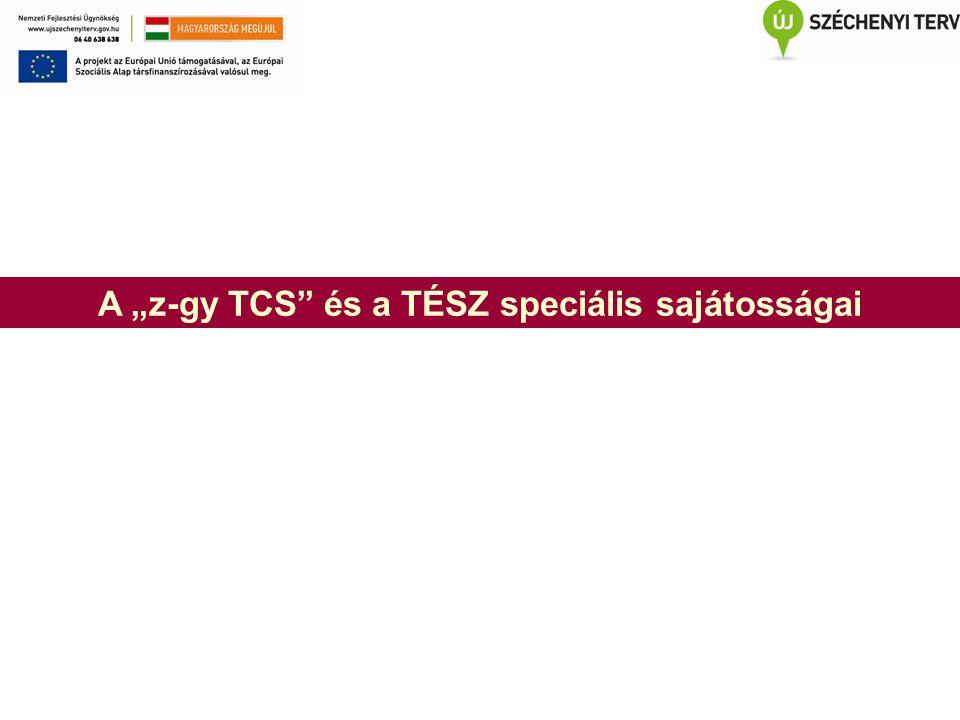 """A """"z-gy TCS és a TÉSZ speciális sajátosságai"""