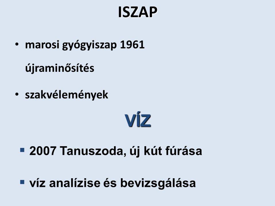 VÍZ Termál és gyógyvíz Kút 2006.