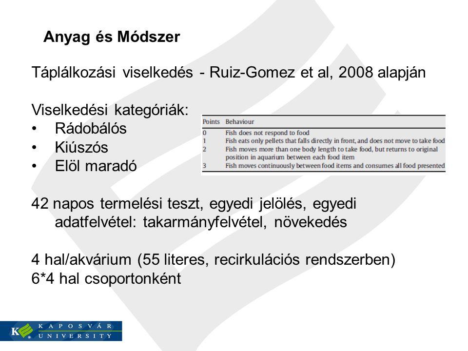 Táplálkozási viselkedés - Ruiz-Gomez et al, 2008 alapján Viselkedési kategóriák: Rádobálós Kiúszós Elöl maradó 42 napos termelési teszt, egyedi jelölés, egyedi adatfelvétel: takarmányfelvétel, növekedés 4 hal/akvárium (55 literes, recirkulációs rendszerben) 6*4 hal csoportonként Anyag és Módszer