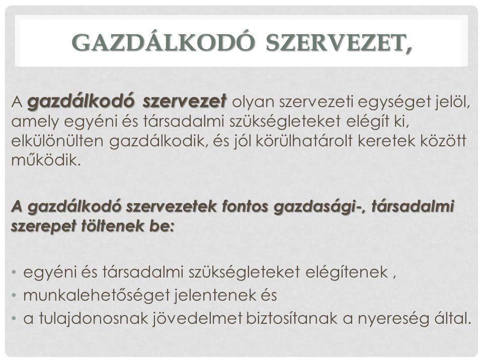 A VÁLLALKOZÁSOK CSOPORTOSÍTÁSA 2.2.
