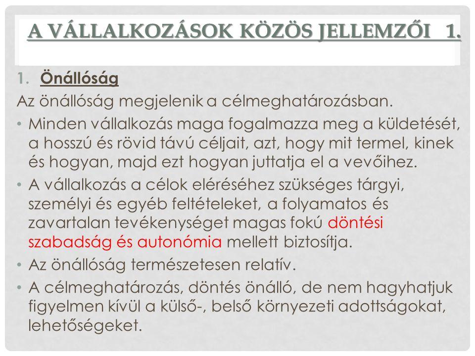 A VÁLLALKOZÁSOK KÖZÖS JELLEMZŐI 2.2.