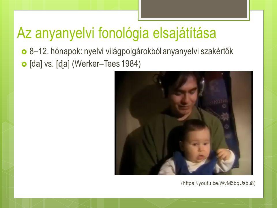 Az anyanyelvi fonológia elsajátítása  8–12. hónapok: nyelvi világpolgárokból anyanyelvi szakértők  [da] vs. [ ɖ a] (Werker–Tees 1984) (https://youtu