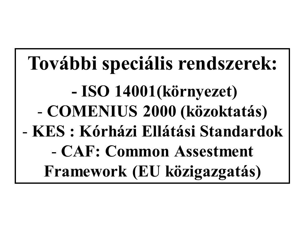 VDA 6.1 Kérdéslista formájában jelenik meg; Egyes kérdések mennyiségi (pontszám/százalék) értékelése; EN ISO 9001/2000 szerinti tagolás, de más a sorr