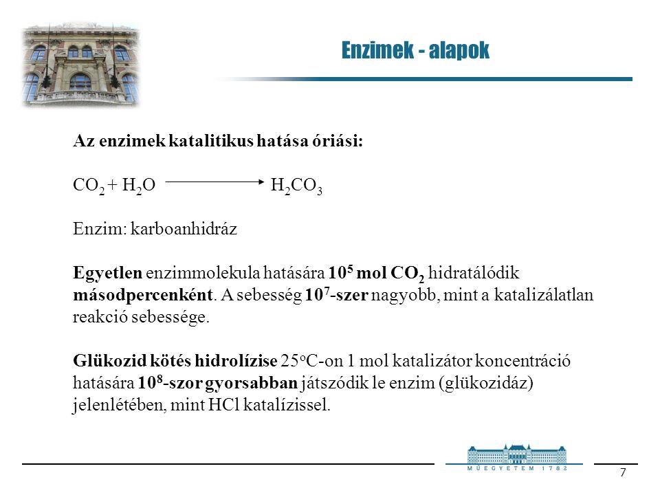 7 Az enzimek katalitikus hatása óriási: CO 2 + H 2 OH 2 CO 3 Enzim: karboanhidráz Egyetlen enzimmolekula hatására 10 5 mol CO 2 hidratálódik másodpercenként.