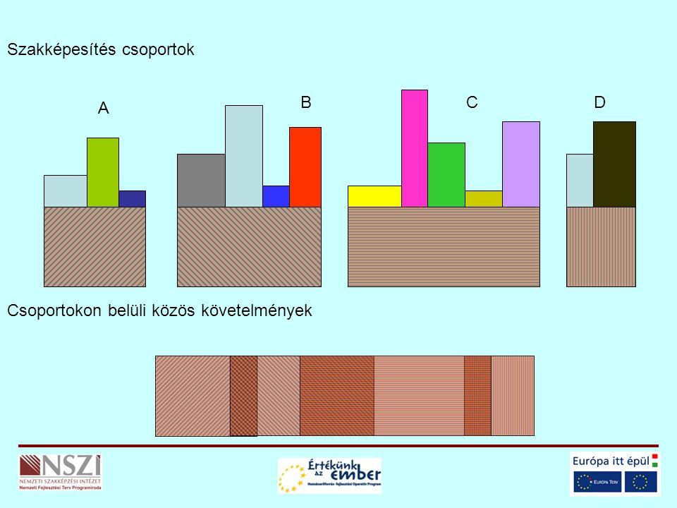 Szakképesítés csoportok Csoportokon belüli közös követelmények A BCD