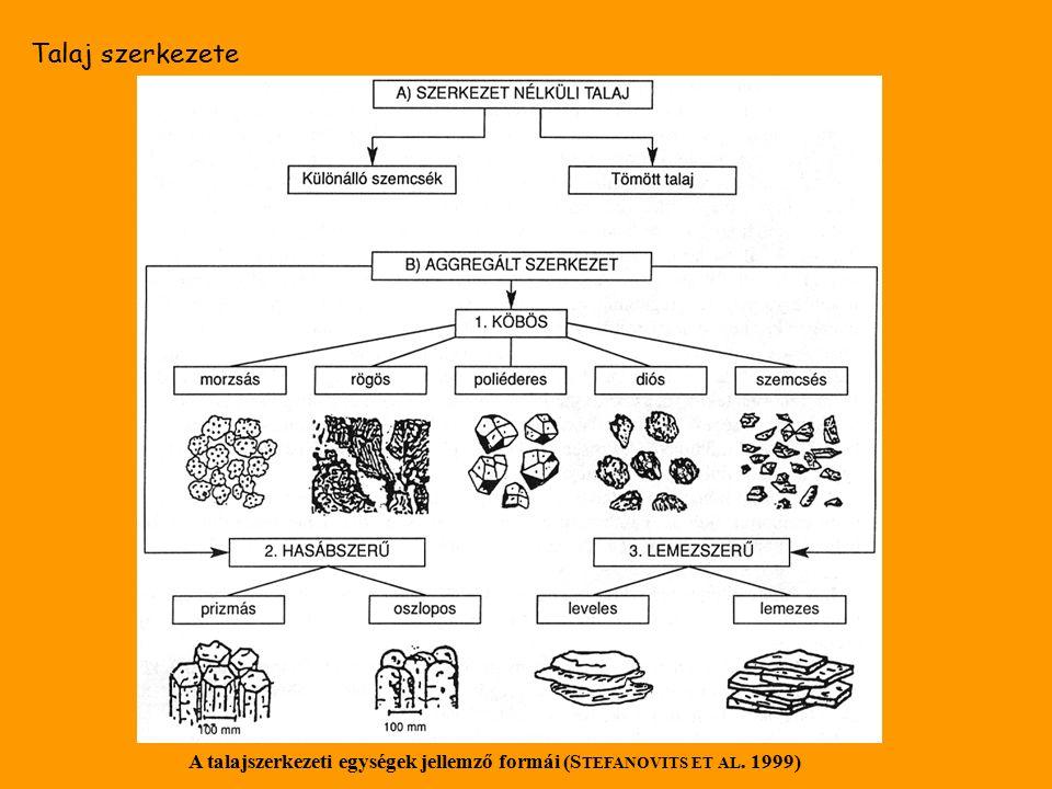 Talaj szerkezete A talajszerkezeti egységek jellemző formái (S TEFANOVITS ET AL. 1999)