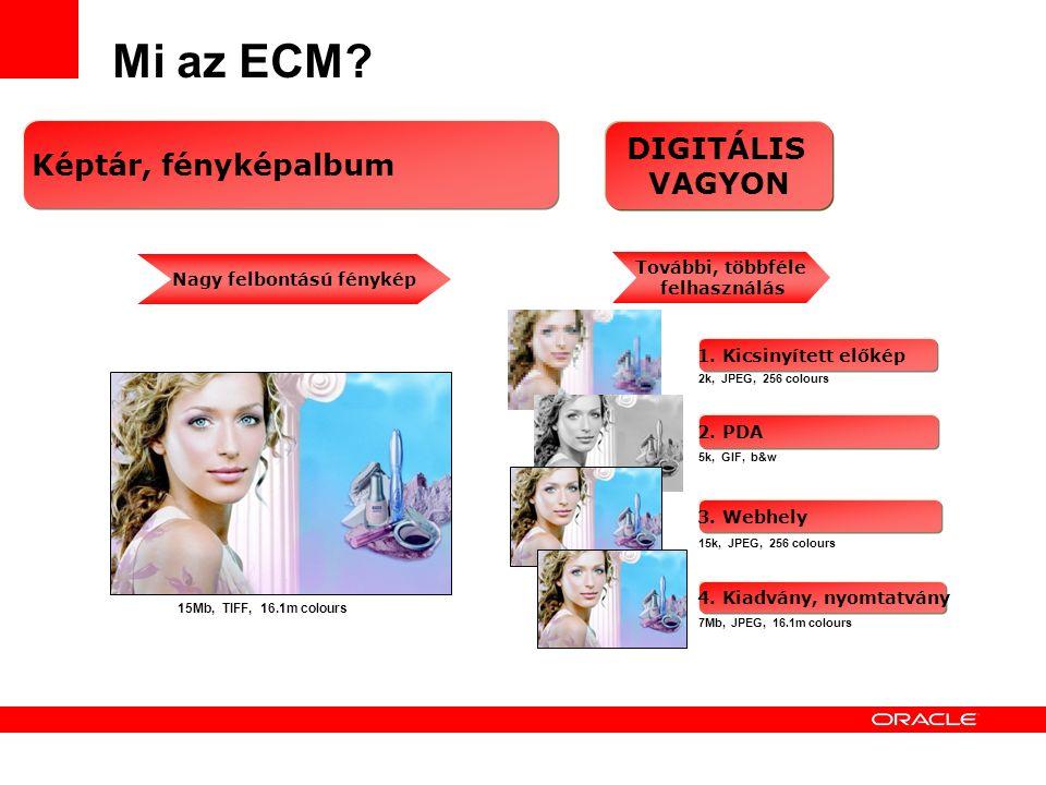 11 Mi az ECM.