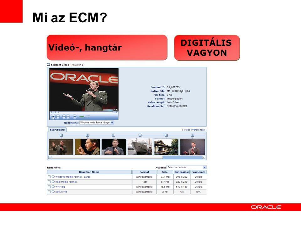 12 Mi az ECM DIGITÁLIS VAGYON Videó-, hangtár
