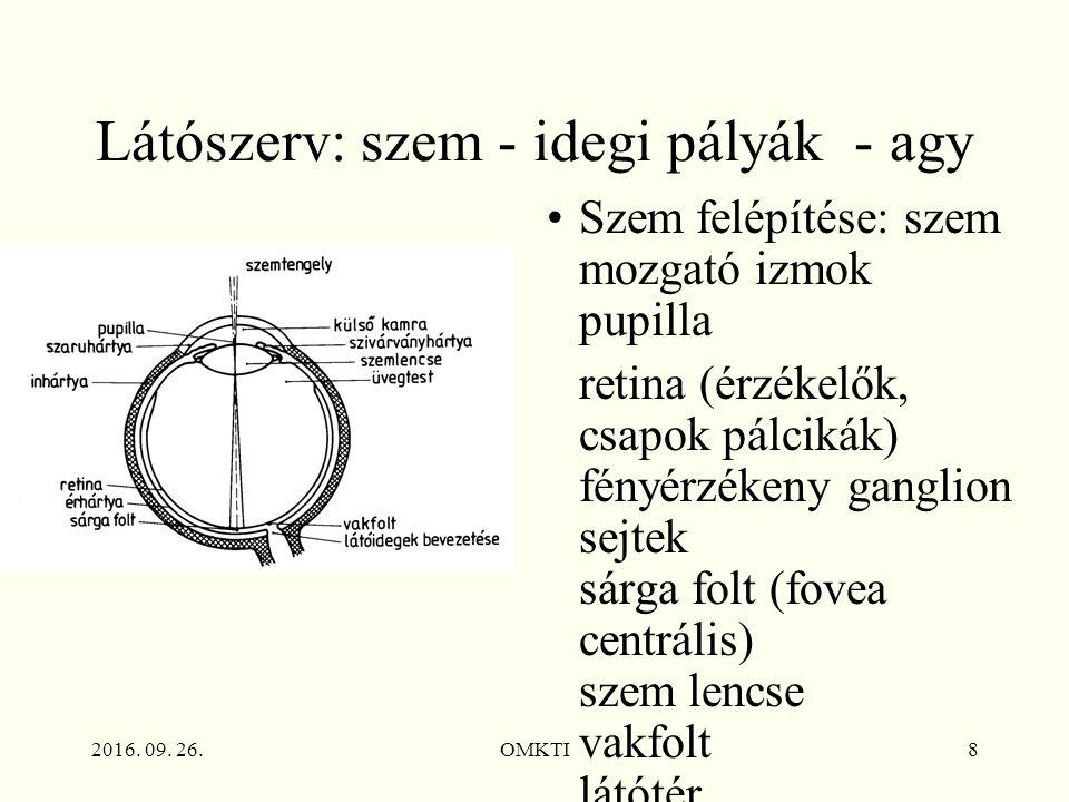 2016. 09. 26.OMKTI8 Látószerv: szem - idegi pályák - agy Szem felépítése: szem mozgató izmok pupilla retina (érzékelők, csapok pálcikák) fényérzékeny