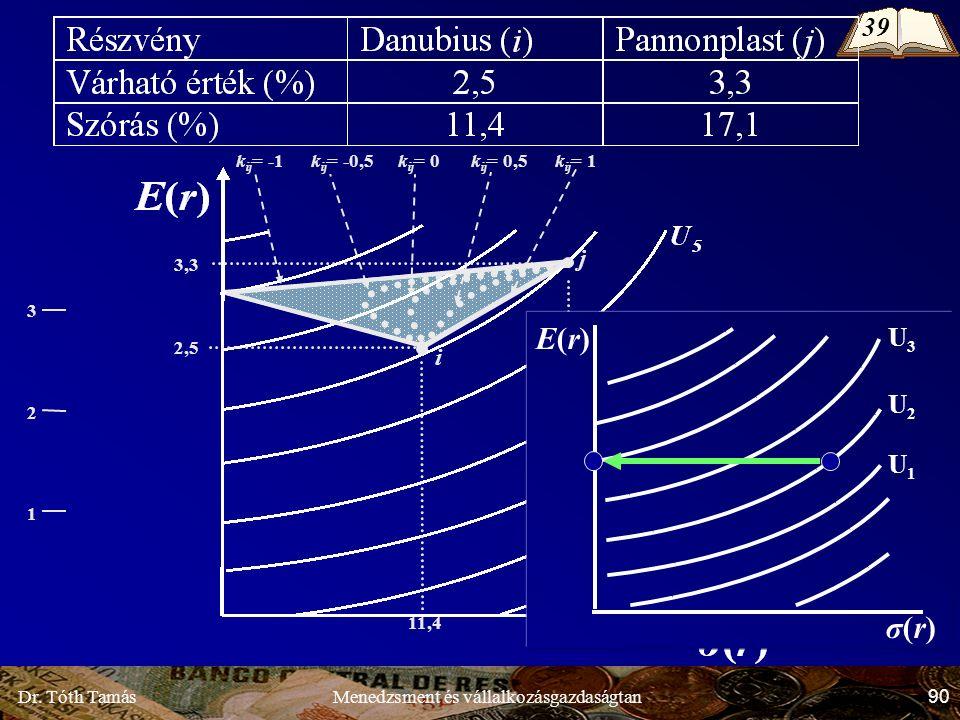 Dr. Tóth Tamás 90 Menedzsment és vállalkozásgazdaságtan k ij = -0,5 k ij = 0 k ij = 0,5 1 3 2 2,5 11,4 i 3,3 17,1 j k ij = 1k ij = -1 E(r)E(r) σ(r)σ(r