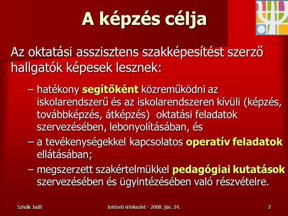 Szivák JuditIntézeti értekezlet - 2008. jún.