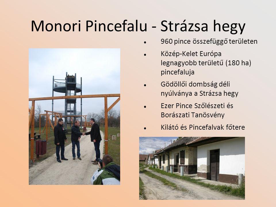 Monori Pincefalu - Strázsa hegy 960 pince összefüggő területen Közép-Kelet Európa legnagyobb területű (180 ha) pincefaluja Gödöllői dombság déli nyúlv