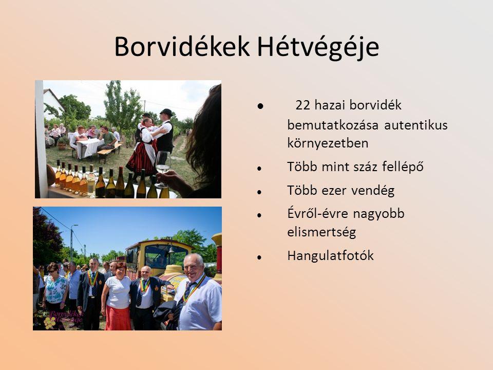 Borvidékek Hétvégéje 22 hazai borvidék bemutatkozása autentikus környezetben Több mint száz fellépő Több ezer vendég Évről-évre nagyobb elismertség Hangulatfotók