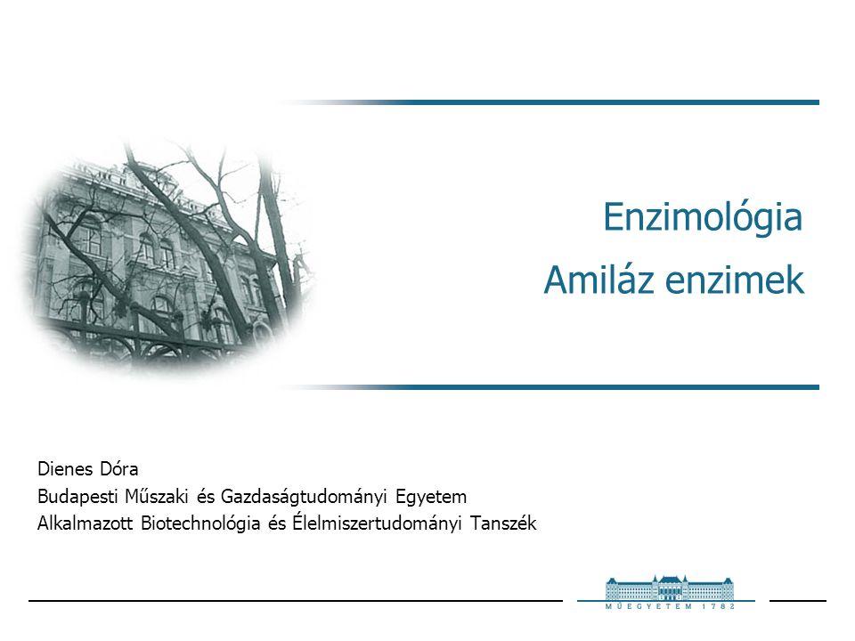 2009Enzimológia – Amiláz enzimek 12 Amilázok Keményítőbontó enzimek  endo-enzim: αlfa-amiláz, elfolyósít ۰αlfa-1,4 kötést bont ۰rövidebb láncokat, dextrineket (6-7 monomer) termel, αlfa-határdextrin  exo-enzimek: β-amiláz ۰nem-redukáló végről ۰maltózt hasít le, határdextrinek maradnak (elágazó amilopektin miatt) γ-amiláz (emberi bélflórában), amiloglükozidáz/glükoamiláz (mikrobák termelik) ۰nem-redukáló végről ۰glükóz egységeket választ le (maltózt csak lassan bontja)  elágazásoknál α-1,6 kötéseket bont  megszünteti az elágazásokat növényekben: R-enzim, mikrobákban: pullulanáz, izoamiláz  transzferázok: α-1,4 glikozidkötés bontása után új glikozidkötést hoznak létre Amylases