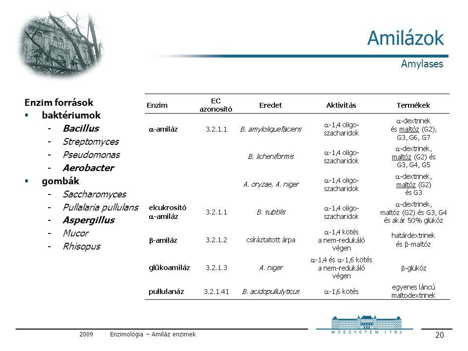 2009Enzimológia – Amiláz enzimek 20 Amilázok Enzim források  baktériumok Bacillus Streptomyces Pseudomonas Aerobacter  gombák Saccharomyces Pullalaria pullulans Aspergillus Mucor Rhisopus Amylases