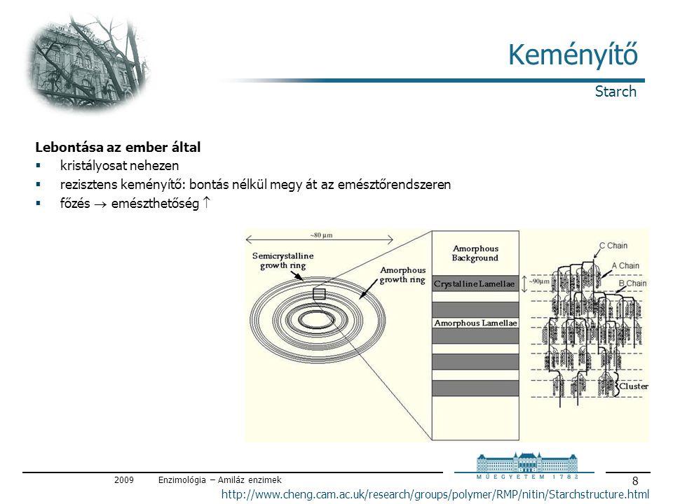 2009Enzimológia – Amiláz enzimek 9 Keményítő Élelmiszer-felhasználás / Starch as food  élelmiszer szénhidrát  élelmiszer adalékanyag sűrítő, stabilizáló (pudingok, szószok, salátaöntetek, tészták stb.) rezisztens keményítő tablettázó segédanyag  keményítőcukrok (részlegesen / teljesen hidrolizálva) édesítő (pl.