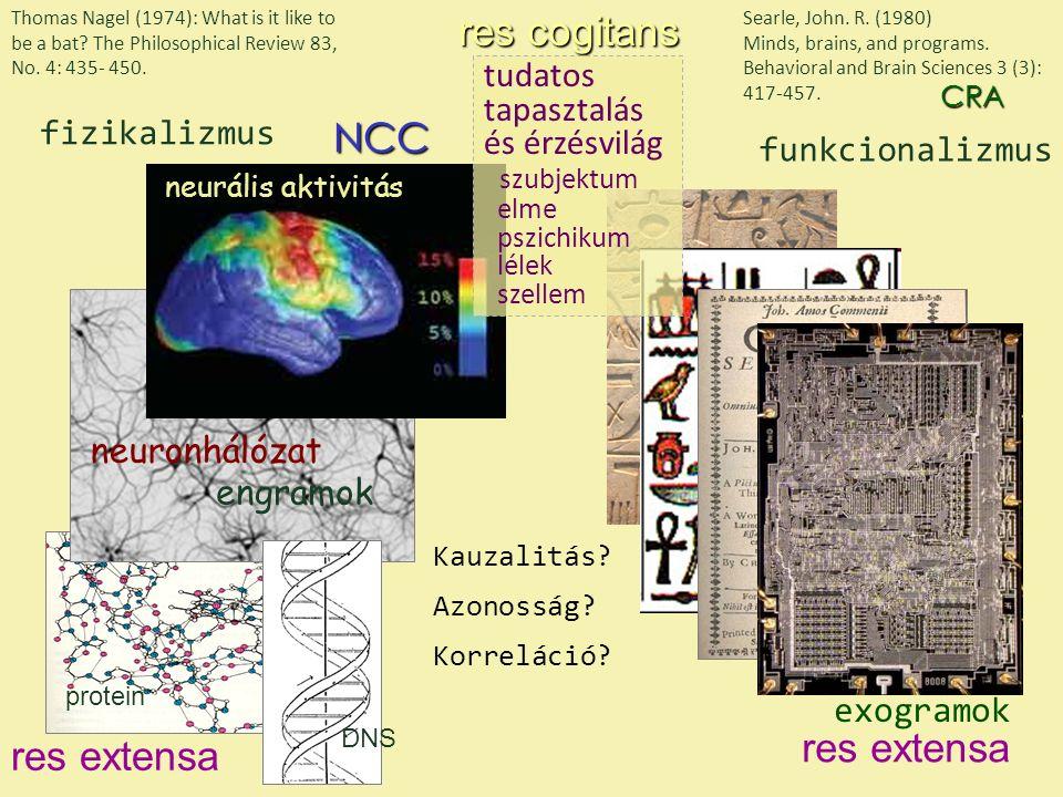 neuronhálózat engramok exogramok neurális aktivitás protein DNS res extensa res cogitans tudatos tapasztalás és érzésvilág szubjektum elme pszichikum