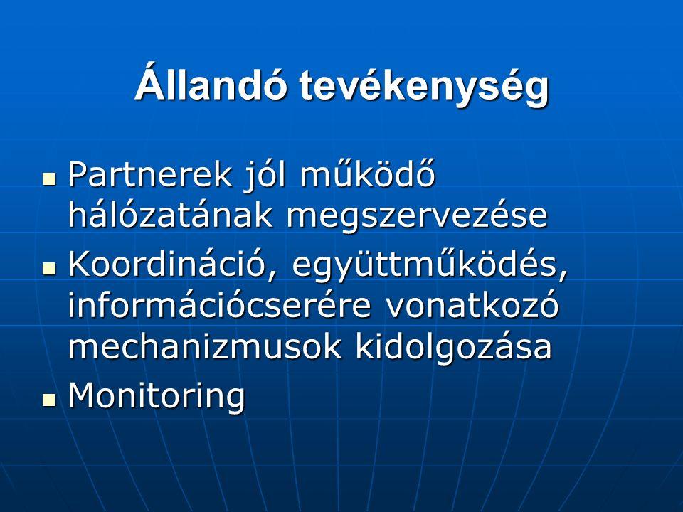 Állandó tevékenység Partnerek jól működő hálózatának megszervezése Partnerek jól működő hálózatának megszervezése Koordináció, együttműködés, információcserére vonatkozó mechanizmusok kidolgozása Koordináció, együttműködés, információcserére vonatkozó mechanizmusok kidolgozása Monitoring Monitoring