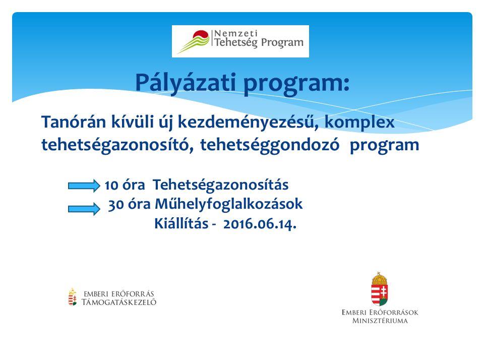 Pályázati program: Tanórán kívüli új kezdeményezésű, komplex tehetségazonosító, tehetséggondozó program 10 óra Tehetségazonosítás 30 óra Műhelyfoglalkozások Kiállítás - 2016.06.14.