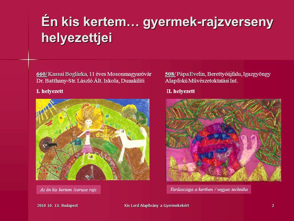 2010 10.13. BudapestKis Lord Alapítvány a Gyermekekért3 Csodavirág /vegyes tech.