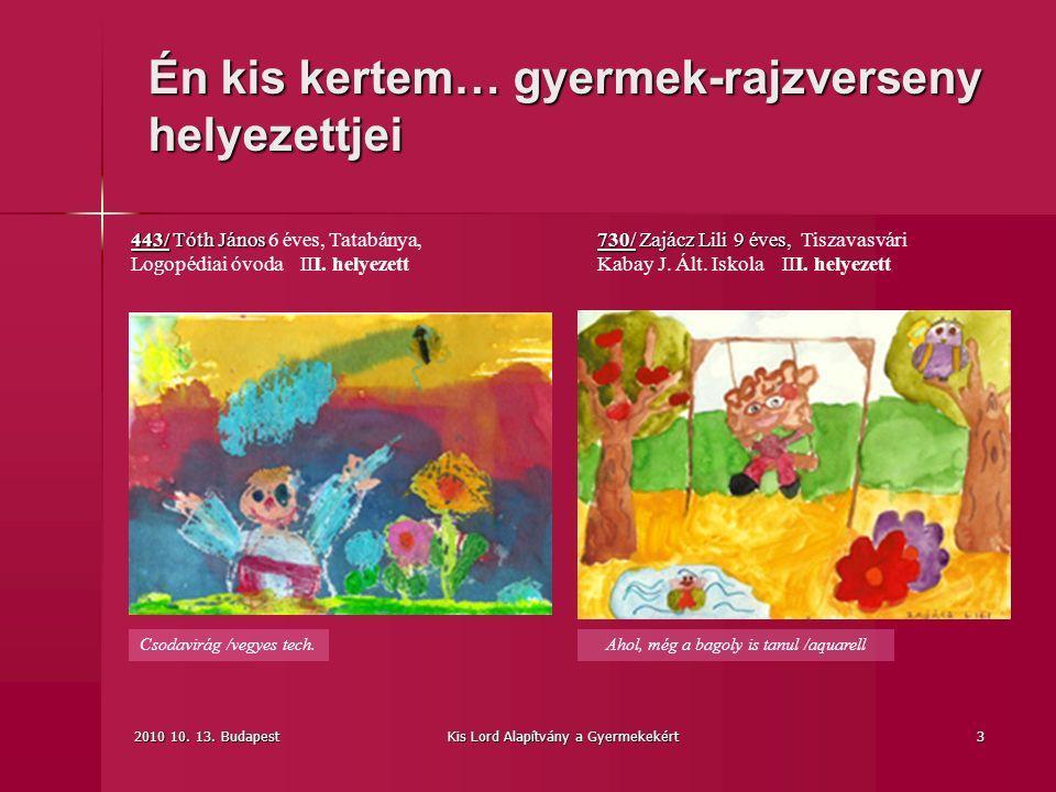 2010 10. 13. BudapestKis Lord Alapítvány a Gyermekekért3 Csodavirág /vegyes tech.