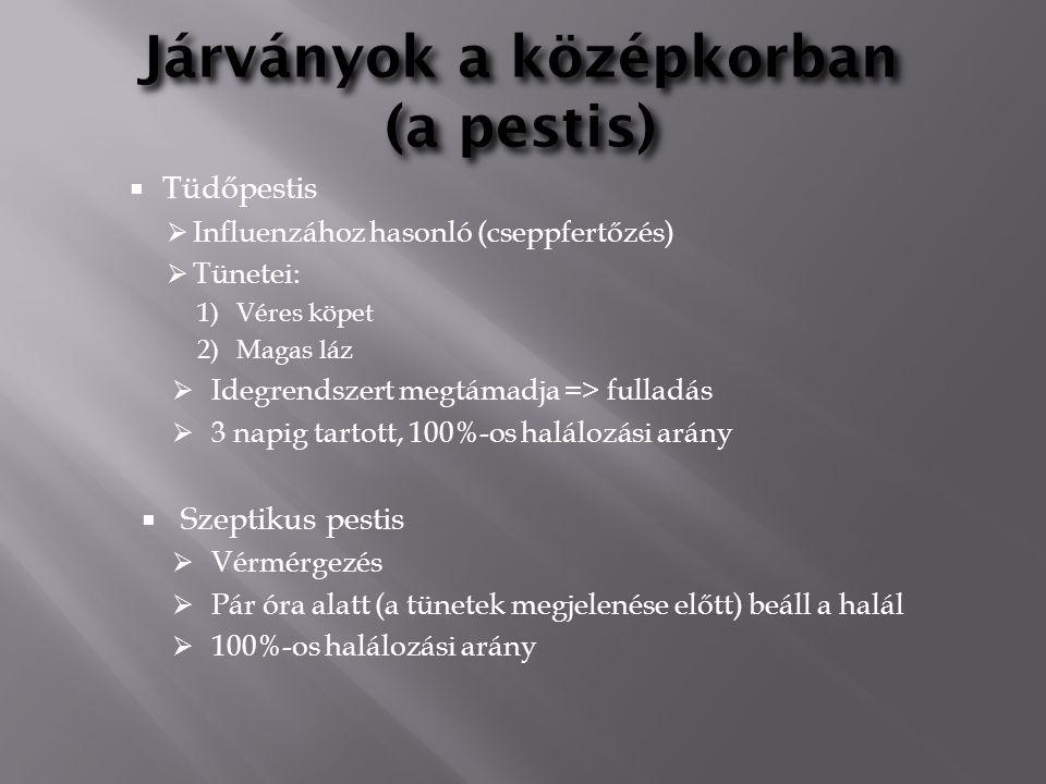 Járványok a középkorban (a pestis)  Tüdőpestis  Influenzához hasonló (cseppfertőzés)  Tünetei: 1)Véres köpet 2)Magas láz  Idegrendszert megtámadja
