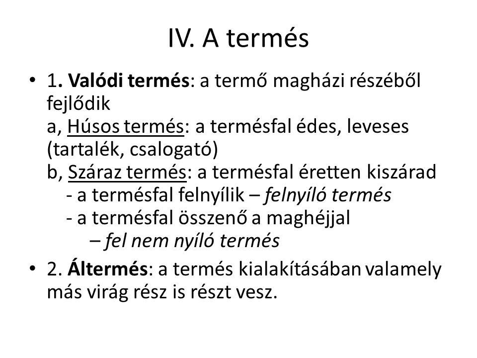 IV. A termés 1.
