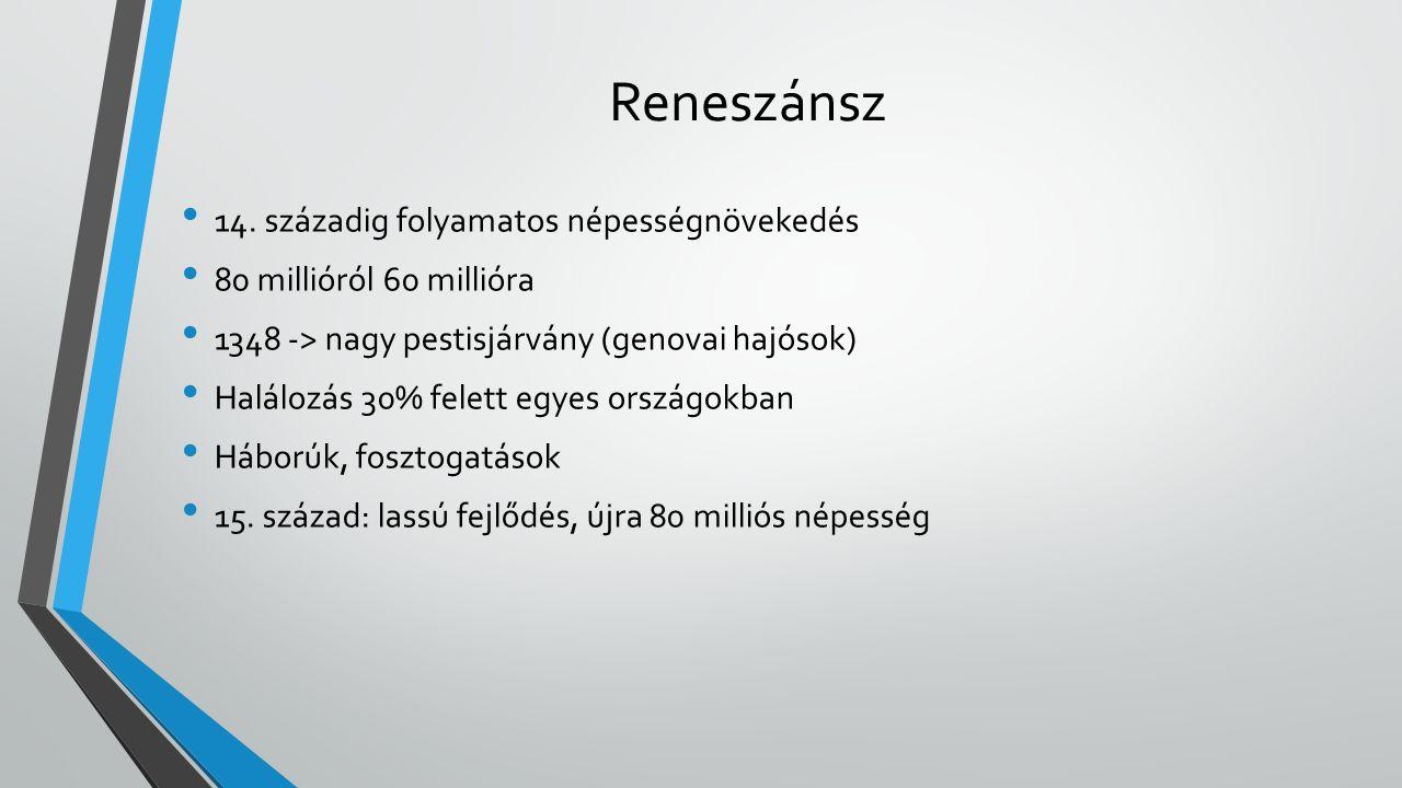 Reneszánsz 14.