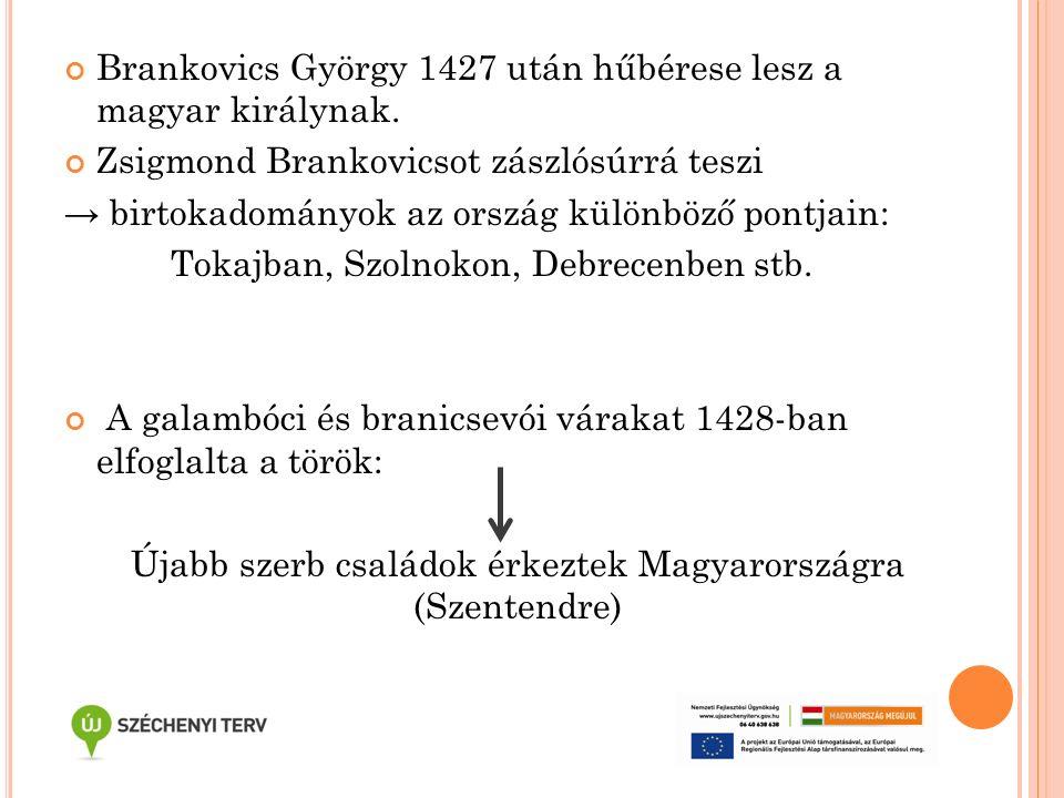 Brankovics György 1427 után hűbérese lesz a magyar királynak. Zsigmond Brankovicsot zászlósúrrá teszi → birtokadományok az ország különböző pontjain: