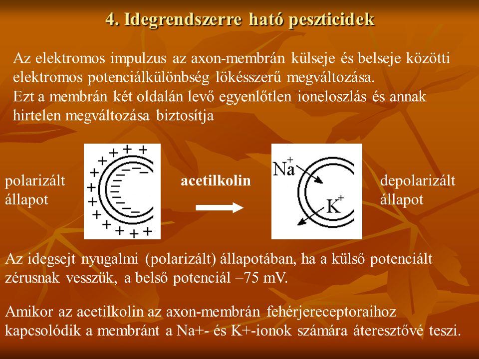 4. Idegrendszerre ható peszticidek Az elektromos impulzus az axon-membrán külseje és belseje közötti elektromos potenciálkülönbség lökésszerű megválto
