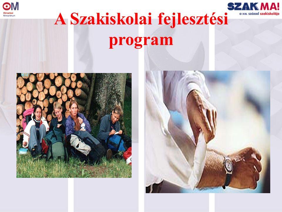 A Szakiskolai fejlesztési program