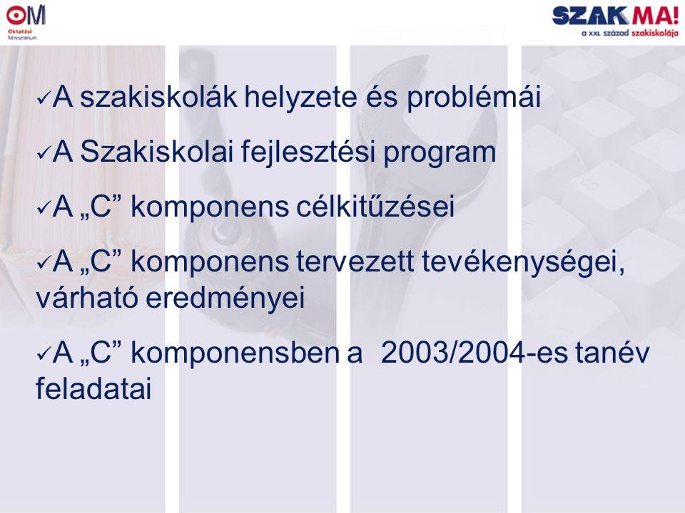 """A szakiskolák helyzete és problémái A Szakiskolai fejlesztési program A """"C komponens célkitűzései A """"C komponens tervezett tevékenységei, várható eredményei A """"C komponensben a 2003/2004-es tanév feladatai"""