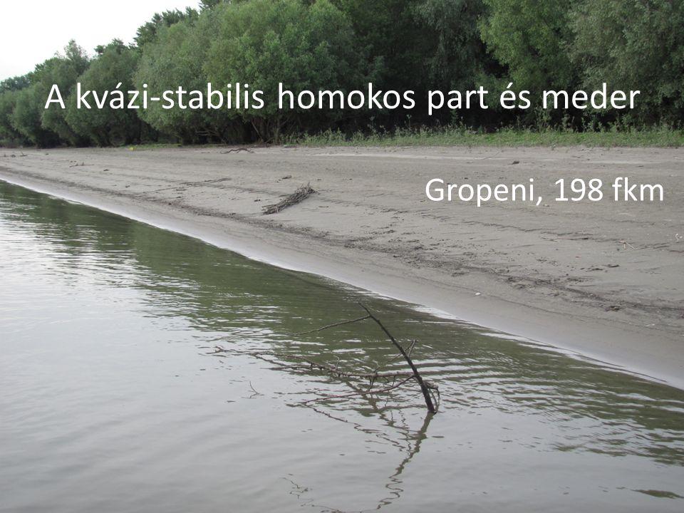 A kvázi-stabilis homokos part és meder Gropeni, 198 fkm